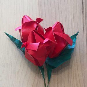 Roses- Stemmed-2